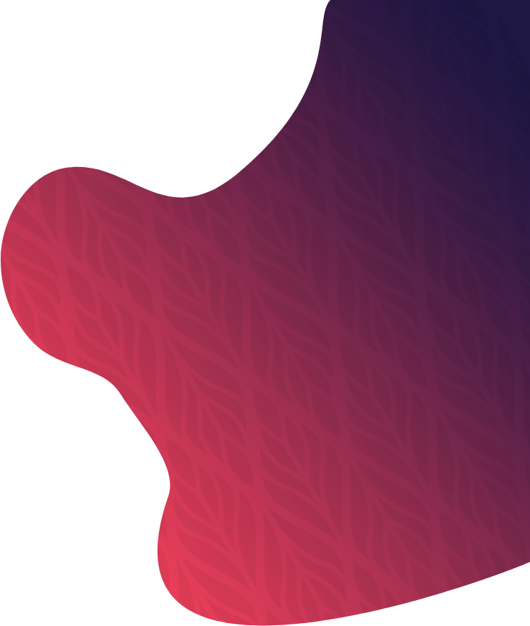 Web Design/Development by ko-kane